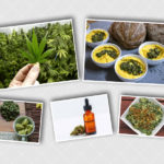 Cannabis and Hemp Products